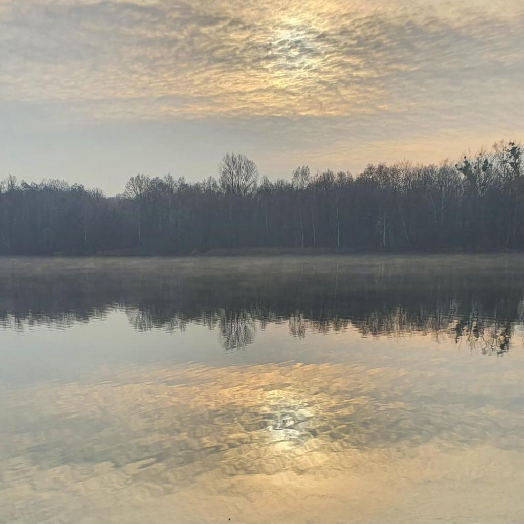 Waldspaziergang Brieselang - Dezember 2020 - Nymphensee