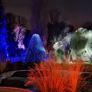 Christmas Garden 2018 sorgt für weihnachtliche Stimmung in Berlin